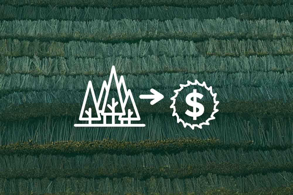 U S  Endowment for Forestry & Communities, Inc  – Sustaining